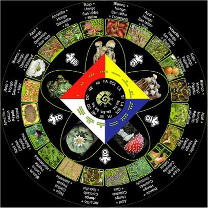 poderes unidos - Mandala sinérgico - códigos mayas_01