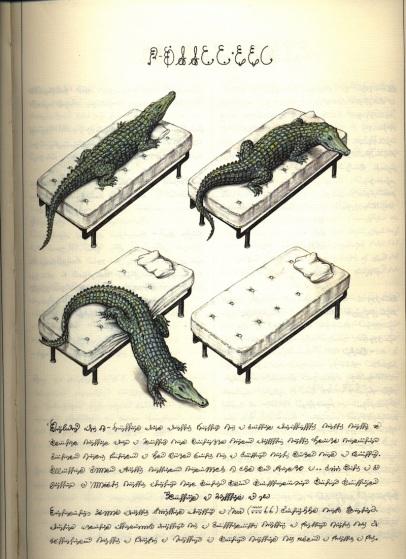 Poderes Unidos - Codex Seraphinianus_05a