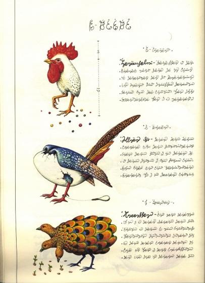 Poderes Unidos - Codex Seraphinianus_05g